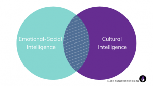 The link between Emotional-Social Intelligence and Cultural Intelligence